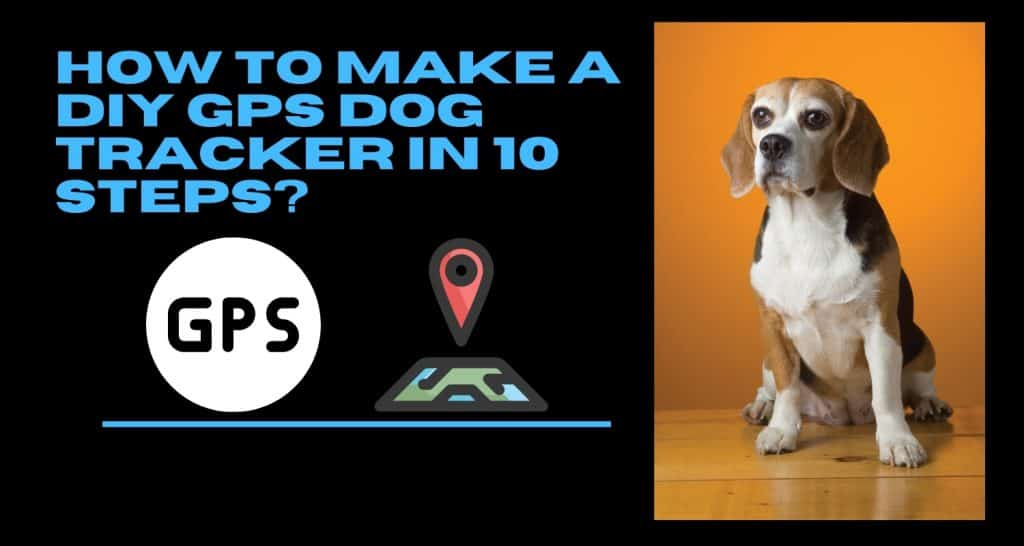 How to Make a DIY GPS Dog Tracker in 10 Steps