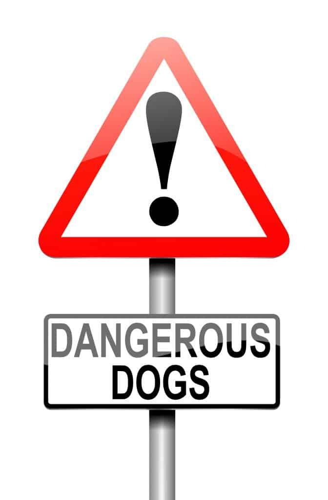 Registration of Dangerous Dogs