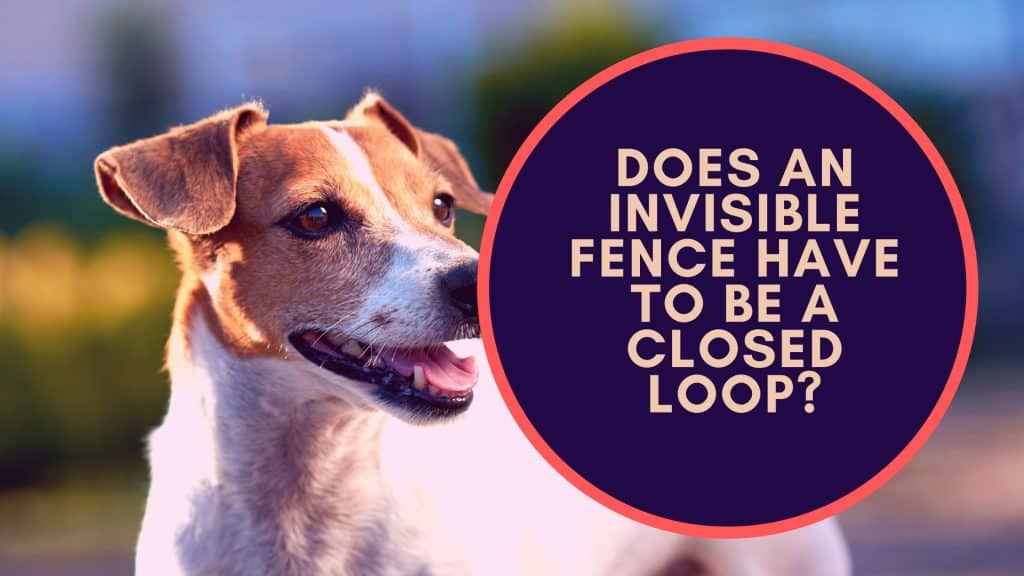 Does An Invisible Fence Have to Be a Closed Loop